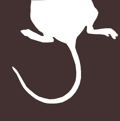 Rat brown